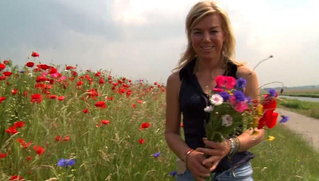 Friesland krijgt eerste Honey Highway